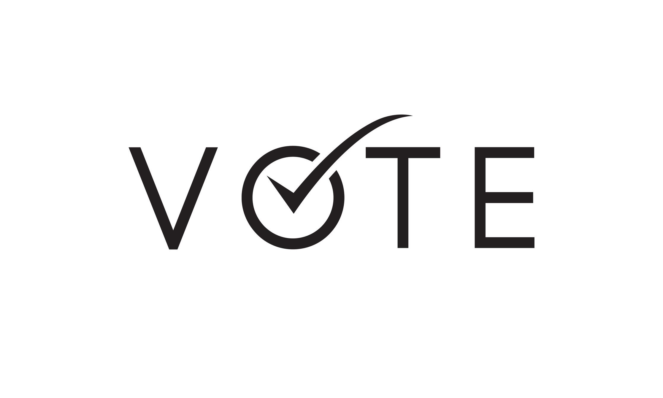 iStock-1269133463 vote with checkmark on word